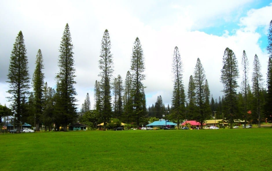 Downtown Lanai City