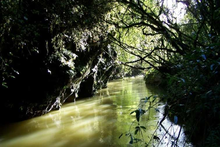 Waitomo river