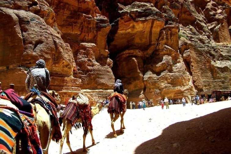 Petra Camel Caravan