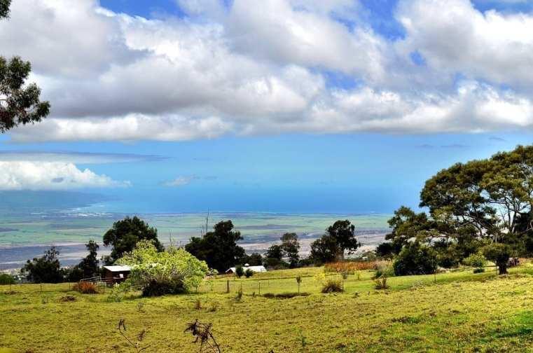 O'o Farm Maui