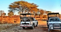 Safari jeep Africa