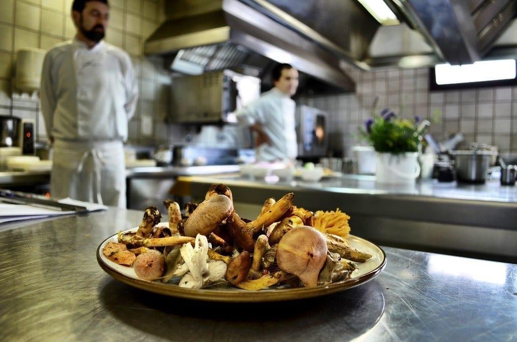 Spain mushroom