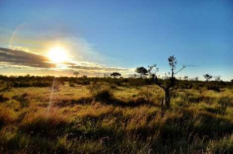 Kruger Africa Sunset