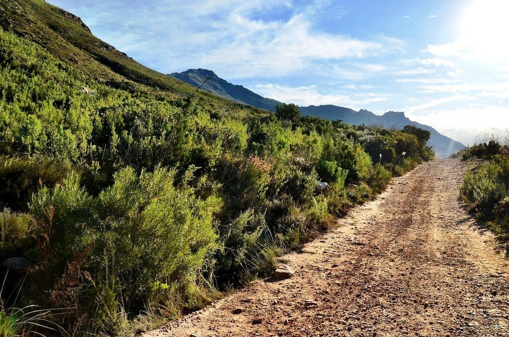 Time Out In Stellenbosch Hiking Through The Most Beautiful Place You Ve Never Heard Of