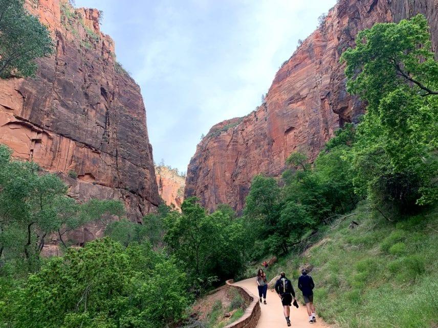 Hiking Through Zion National Park